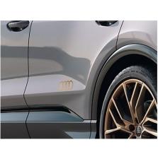 Kleebis Audi rõngad, mattpronks